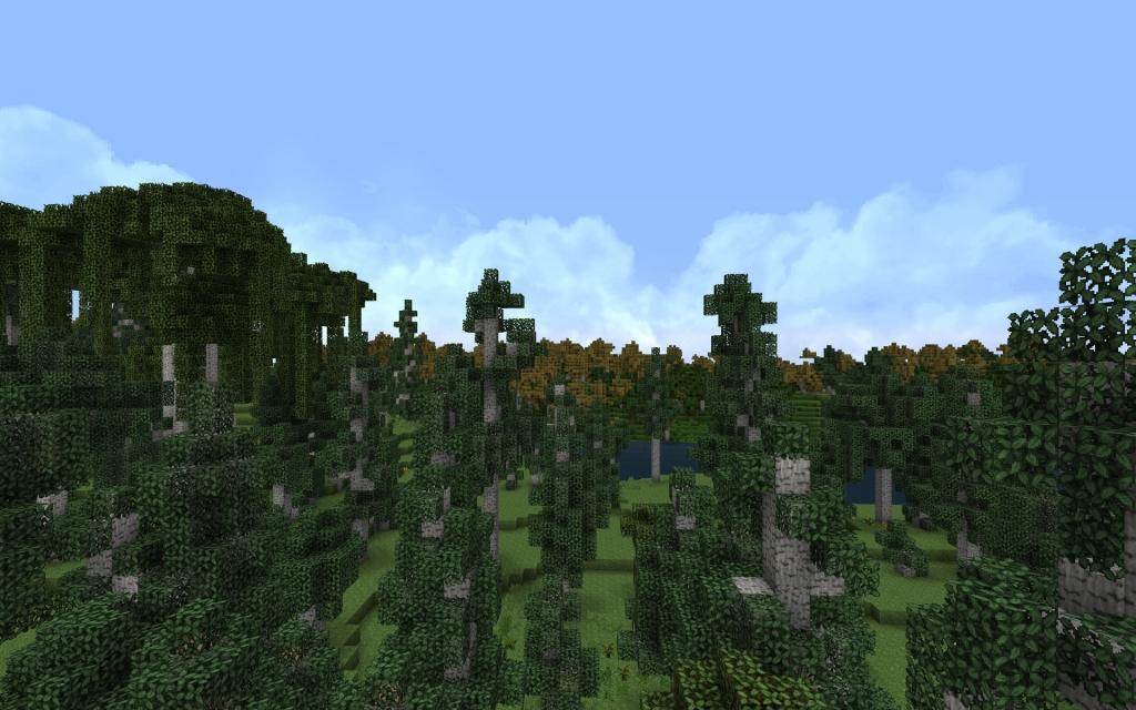 fendarfell-birchforest